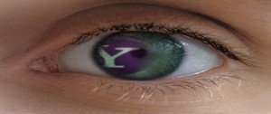 Yahoo! of my eye